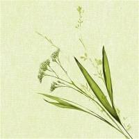 Middagsserviet, Dunilin Liz, 1/4 fold, 40x40cm, grøn *Denne vare tages ikke retur*
