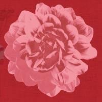 Kaffeserviet, Duni Autumn Floral, 3-lags, 24x24cm, bordeaux *Denne vare tages ikke retur*