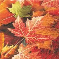 Frokostserviet, 3-lags, 1/4 fold, 33x33cm, flerfarvet, 100% nyfiber, efterårsblade