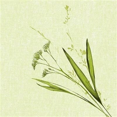 Image of   Middagsserviet, Dunilin Liz, 1/4 fold, 40x40cm, grøn *Denne vare tages ikke retur*