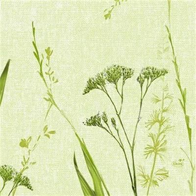 Image of   Frokostserviet, Duni Liz, 3-lags, 1/4 fold, 33x33cm, grøn, papir *Denne vare tages ikke retur*