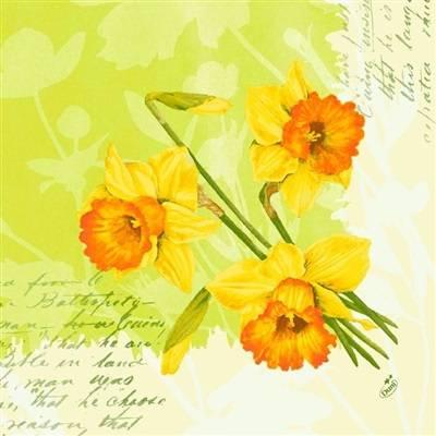 Image of   Middagsserviet, Dunilin Spring Flowers, 1/4 fold, 40x40cm, kiwi *Denne vare tages ikke retur*