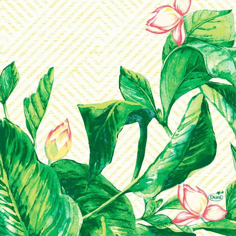 Image of   Frokostserviet, Duni Banas, 3-lags, 1/4 fold, 33x33cm, grøn *Denne vare tages ikke retur*