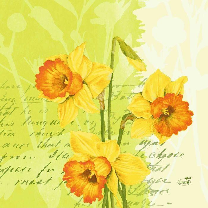 Image of   Frokostserviet, Duni Spring Flowers, 3-lags, 1/4 fold, 33x33cm, kiwi *Denne vare tages ikke retur*