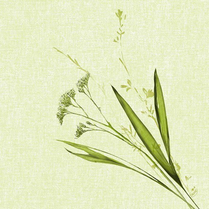 Image of   Middagsserviet, Dunisoft Liz, 1/4 fold, 40x40cm, grøn *Denne vare tages ikke retur*