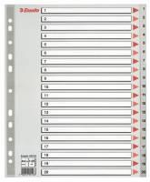 Register Esselte A4 1-20 Maxi 100126