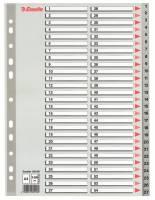 Register Esselte A4 1-54 i plast m/forblad grå