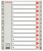 Register Esselte A4 Maxi 1-12 m/forblad plast grå