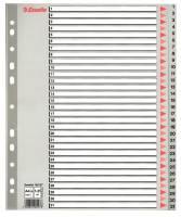 Register Esselte A4 Maxi 1-31 m/forblad plast grå